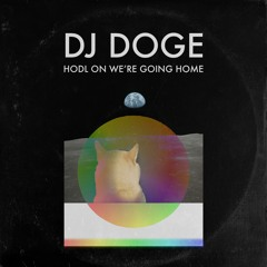 DJ DOGE - HODL ON WERE GOING HOME (LEAKED 2021)