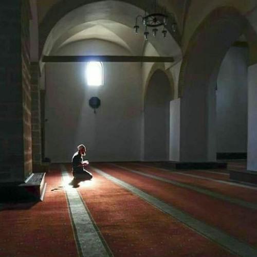 يا إمام الرسل عبد الرحمن حسين