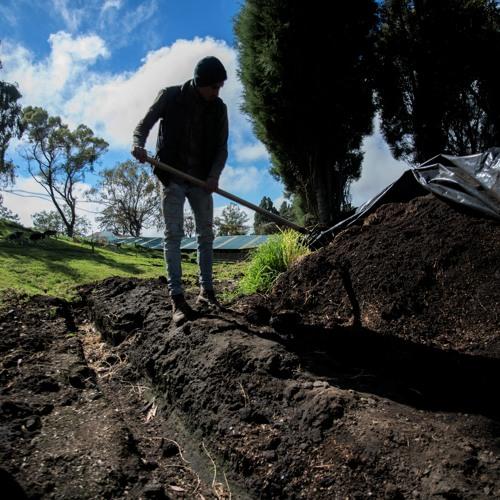 Adaptación y mitigación en el agro, más que palabras Mayo 19 2021