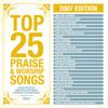 Hallelujah (Your Love Is Amazing) (Top 25 Praise Songs 2007 Album Version)