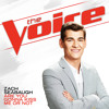 Are You Gonna Kiss Me Or Not (The Voice Performance)