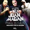 Bailando por el Mundo (feat. Pitbull & El Cata)