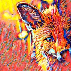 Foxes (Prod. NeenaB)