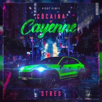 Cocaina Si Cayenne (Big UP Remix)