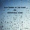 Rainy Night1 (White Noise, Nature Sound)