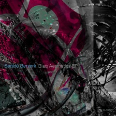 [Premiere] Sonido Berzerk - Black Amen (out on Blaq Records)