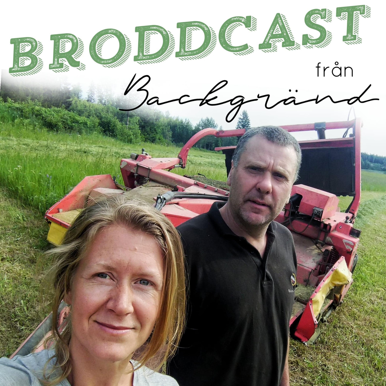 Broddcast#3: Roger i Böle