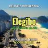 Download Relight Orchestra - Elegibo (Nicolas Belli & Erwin remix bootleg) Mp3