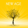 New Age Music Relaxing Songs