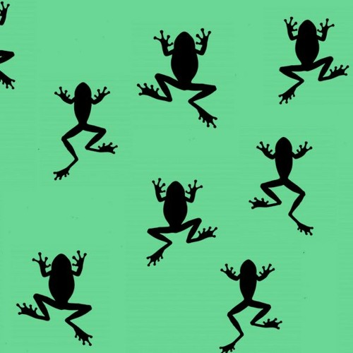The Frogs Are Dropping Dead In Australia