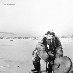 The Walkers - TZI