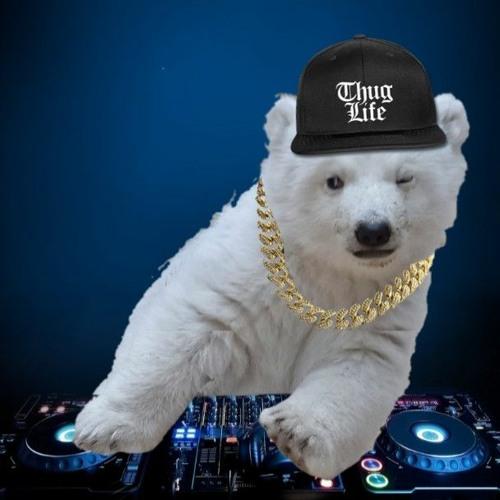 Polar Bear's (Drum and Bass)