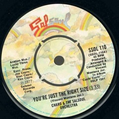 The Salsoul Orchestra - You're Just The Right Size (Loshmi Edit) - Free Download