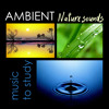 Ambient Nature Sounds to Study - Relaxation & Meditation Relax Melodies for Sleep, Ocean Waves, Thunderstorm and Rain Seasons Mix