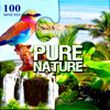 100 Minutes Pure Nature – Relax in Exotic Paradise with Bubbling Brook, Ocean Waves, Birds, Crickets, Frog, Waterfalls, Rain, Wind