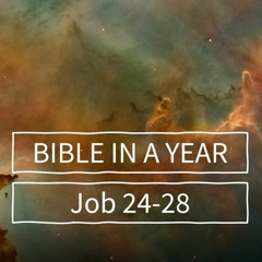 Bible in a Year | Day 10 | Job 24-28