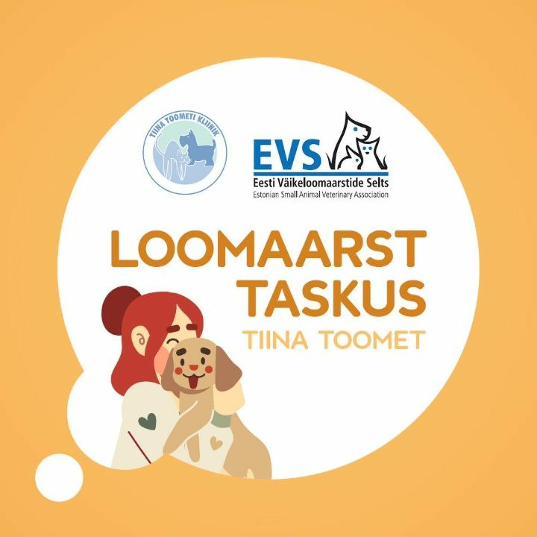 Episood 14: Miks on lemmikute kiibistamine oluline ja millega tegeleb Eesti Väikeloomaarstide selts?