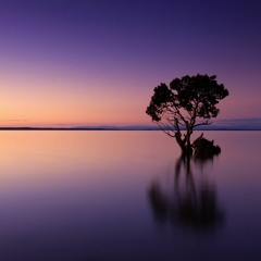 Calm Evening - Free Soothing Relax Ambient Music For Videos | Background Music (Free Download)