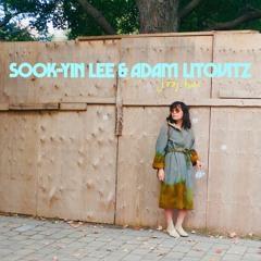 Sook-Yin Lee & Adam Litovitz - Wrecking Heart