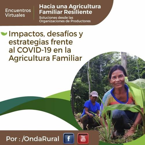 Webinar 1: Impactos, desafíos y estrategias frente al COVID-19 en la Agricultura Familiar