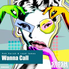 Wanna Call (Original Mix)