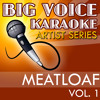 You Took the Words Right Out of My Mouth (In the Style of Meatloaf) [Karaoke Version]