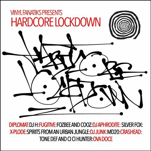 Download VA - Vinyl Fanatiks Presents Hardcore Lockdown [VFS001LP] mp3