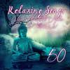 Lounge Music (Top 100 Yoga)