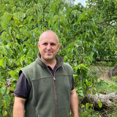 Tiptree has the largest Mulberry orchard in the UK