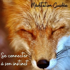 Méditation Relaxation - Ecouter son instinct