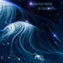 Celestial Fields