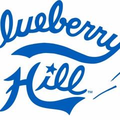 Blueberry Hillbilly