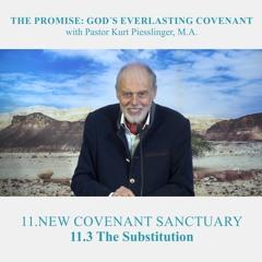 11.3 The Substitution - NEW COVENANT SANCTUARY | Pastor Kurt Piesslinger, M.A.