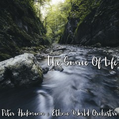 The Source Of Life (feat. Ethnic World Orchestra)
