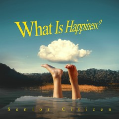 What Is Happiness? (Original Version)