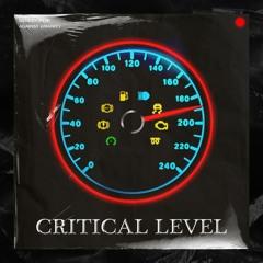 Critical Level (Feat. BENDER Polyteknik)