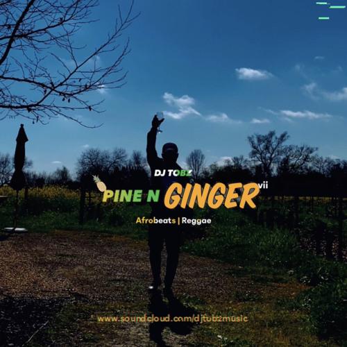Pine N Ginger VII (Afrobeats x Reggae Blends)
