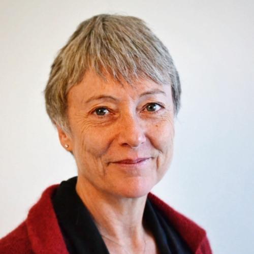 Jo Stubley - Introduction to Trauma