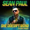 She Doesn't Mind (Pitbull Remix)