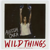 Wild Things Nukid Remix Mp3