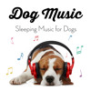 The Best Background Music for Dogs