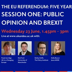 Public opinion and Brexit