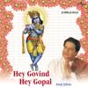 Hey Govind Hey Gopal (Album Version)