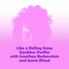 Like A Rolling Stone (Dylan cover with Jonathan Beckenstein and Jamie Rhind)