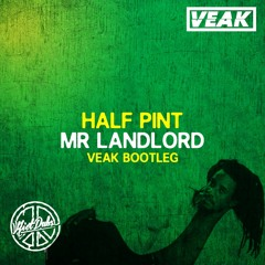 Half Pint - Mr Landlord (Veak Bootleg) [Riot Dubs]
