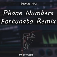 Phone Numbers - (Fortunato Remix)