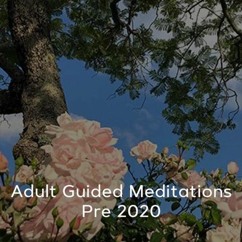 Adult Meditations - Pre 2020