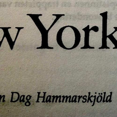 Herwig Arts Dag Hammarskjöld Een kluizenaar in New York