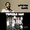 Main Theme From Trouble Man (2)