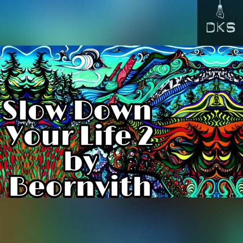 Slow Down Your Life 2   Organic House, Downtempo Techno